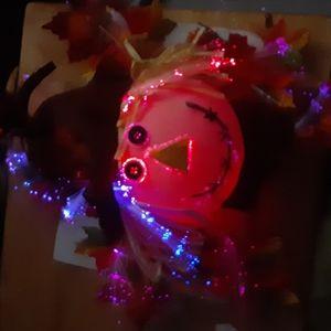Fiber Optic Scarecrow.